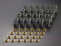 UPRATED VALVE SPRING SET